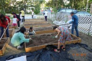 garden.2